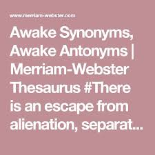 Cabinets Synonyms Best 25 Fear Thesaurus Ideas On Pinterest Word Meaning