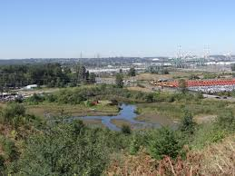 Wetland Resources Of Washington State by Natural Resource Damage Assessment Nrda City Of Tacoma