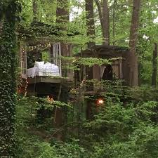 the most popular listing on airbnb is a secluded treehouse in