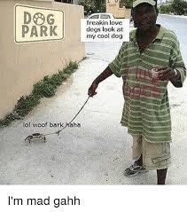 Cool Dog Meme - freakin love park dogs look at my cool dog lol woof bark haha i m
