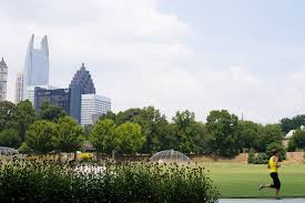 atlanta finds its identity as tree is threatened the new