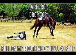 Horse Riding Meme - 13 memes about horses that are way too real eventing connect