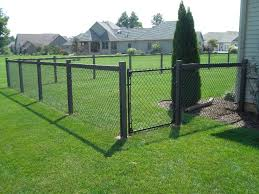 Backyard Fences Ideas by Best 25 Chain Link Fencing Ideas On Pinterest Chain Link Fence