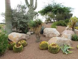 Landscaping Ideas With Rocks Xeriscape Design Xeriscaping Ideas Landscaping Network Drought