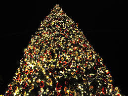 100 cristmas tree 7 5 ft pre lit natural cut flocked