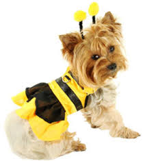 pet costume cat costumes dog costume dog halloween costumes