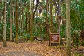 Florida State Parks Camping Map by Best Scenic Hikes In Florida Florida Hikes
