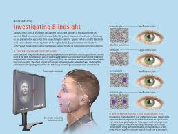 Blind Side Definition Box 2 Uncanny Sight In The Blind Scientific American