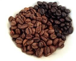 Coffee Bean Blended cafã olã â brewed at cerveses spigha beancurdturtle brewingâ llc