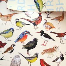 bird wrapping paper the finch boutique for bird bridgewater birds gift