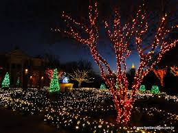 Botanical Gardens Atlanta Christmas Lights by Passeio Em Atlanta Garden Lights No Atlanta Botanical Garden