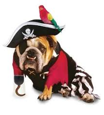 White Dog Halloween Costume 38 Halloween Dogs Bowser Beer Images