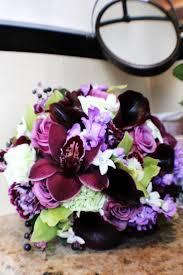 Purple Carnations Purple Carnations Hakkında Pinterest U0027teki En Iyi 20 Fikir