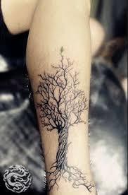 best 25 tree tattoo designs ideas on pinterest tree roots