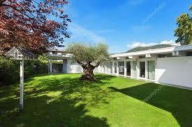 albero giardino giardino di una casa moderna con l albero di ulivo foto stock