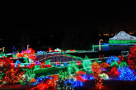 lights of christmas stanwood seattle local flavor christmas lights