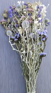 dried flowers dried blue flowers dried flower bouquets for sale