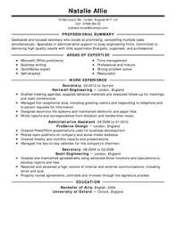 Resume Format Job Application by Examples Of Cover Letters Of Resume Cover Letter Examples 2