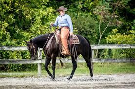 spirit halloween roanoke va roanokeequestrian u2013 roanoke equestrian