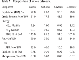 oilseed crops in beef cattle rations