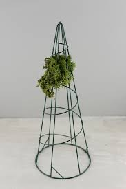 Garden Topiary Wire Forms Wire Topiary Cone