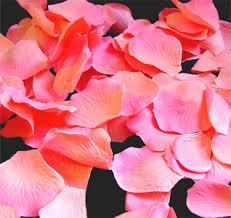 flower petals flower petals petals