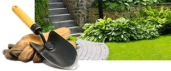 Green Thumb Landscaping by Green Thumb Nursery And Landscaping Contractors Beaumont Texas