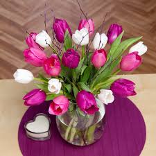 mothers day tulips send mother u0027s day tulips by post tulips