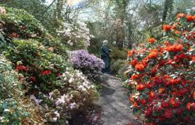 branklyn garden perth and places to stay great british gardens