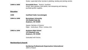 resume wonderful college application resume templates wonderful