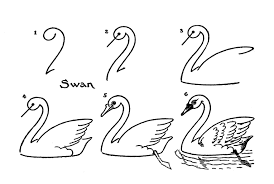 drawn swan easy pencil and in color drawn swan easy
