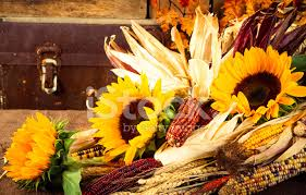 harvest cornucopia fall harvest cornucopia fruits vegetables stock photos