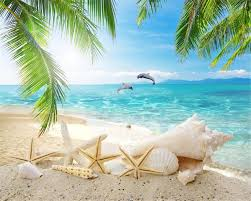 popular dolphins entertainment buy cheap dolphins entertainment beibehang hd seashell beach seaview landscape coconut tree dolphin tv backdrop 3d home decoration mural wallpaper
