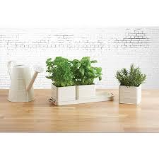 Kitchen Herb Pots Kitchen Window Herb Pots Caurora Com Just All About Windows And Doors