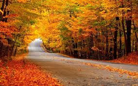 autumn wallpapers wallpapers browse