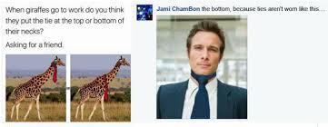 Giraffe Hat Meme - the sunday evening roundup of all my favorite things