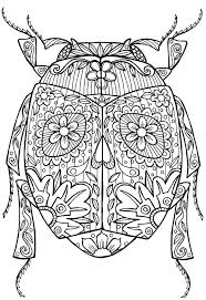 insect coloring pages pdf glum