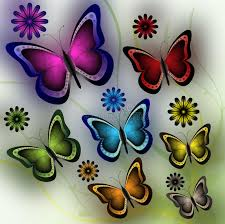 butterflies and flowers stock vector illustration of illustration