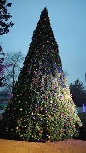 commercial christmas tree ne wall