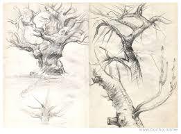 Oak Tree Drawing Dimitar Bochukov U2013 Illustrator And Concept Designer Sketchbook