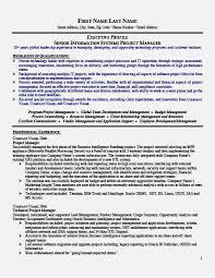 Program Manager Resume Objective 100 Technical Lead Resume 5 Project Manager Resume Objective