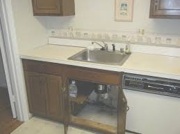 mold under kitchen sink mold under kitchen sink ideas house generation