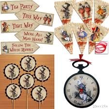 alice in wonderland party ebay