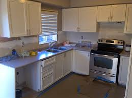 Schuler Kitchen Cabinets Reviews Flooring Category Interesting Interior Wall And Floor Design