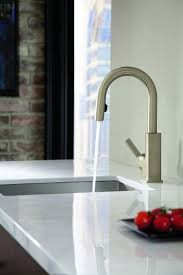 Moen Camerist Kitchen Faucet Kitchen Faucet Moen Shower Knob Replacement Parts Moen Side