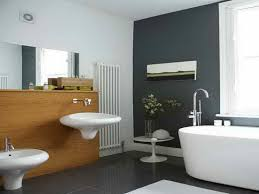 Painting Ideas For Bathrooms Small Interior Paint Ideas For Small Homes Custom Decor Interior Paint