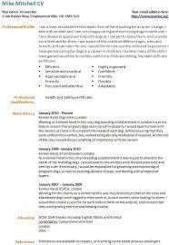 Personal Carer Resume Personal Carer Resume 100 Original Papers Cv Key Skills It Pin