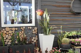 succulents in melbourne pots galore