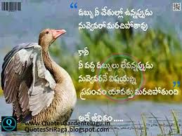 quote garden success top inspirational life quotes images telugu quotes garden telugu