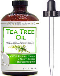 Essential Oil Amazon Amazon Com Pure Body Naturals 100 Pure Australian Tree